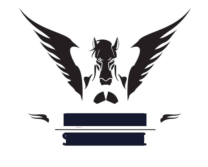 Elphenn Service